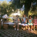 L'albero dei libri - Cala Molinella Villaggio Eco Sostenibile Puglia